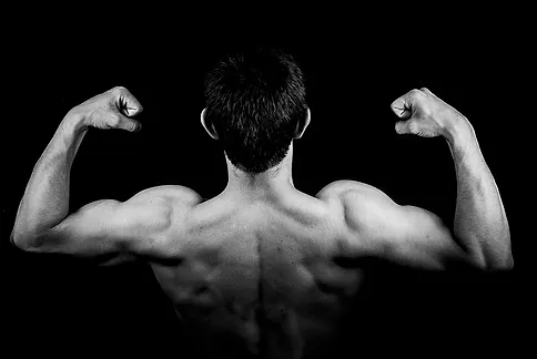 What You Need To Know About Mass Gainers?
